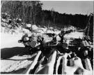 Unloading logs at Bear Pond landing, Waterford Township, 1939
