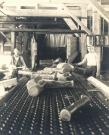 Workers at Pejepscot Paper Company, Topsham, ca. 1900