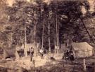 At campsite, near Millinocket, ca. 1900
