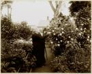 Annie Stone Stanwood, Brunswick, ca. 1900