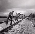 Railraod Sectionmen Spreading Ballast, Littleton, 1956