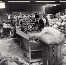 Repackaging California Potatoes, Blaine, 1966