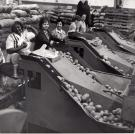 Weighing and Bagging Potatoes, 1966