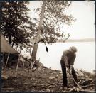 Chopping firewood, Lobster Lake, 1909