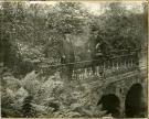 Abbott School Grounds, Farmington, ca. 1900