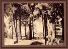 Winter scene, Waterford, ca. 1910