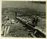 Load of pulp arrives, Westport Island, 1957
