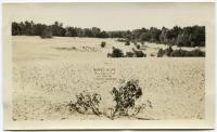 Desert of Maine, Freeport, ca. 1936
