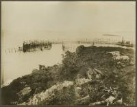 Herring weir at Sandy Island, Eastport, ca. 1887