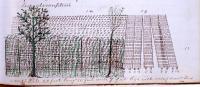 Wood pile, 130 Center St., Bangor, ca. 1864