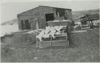 Studley fish house and flakeyard, Monhegan, ca. 1880