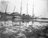 Cape Porpoise pier, ca. 1900