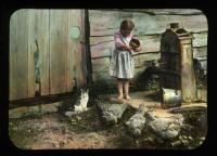 Hazel True feeding the hens, New Portland, ca. 1910