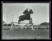 Rider jumping over fence, ca. 1930
