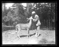 Man and deer sharing a connection, ca. 1935