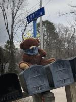 Teddy bear in pandemic mask, Brunswick, 2020