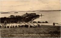 Mt. Kineo House and sheep, Mt. Kineo, ca. 1900