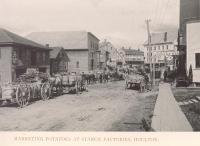 Marketing potatoes at starch factories, Houlton, 1895
