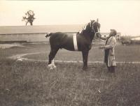 Horse and master, c. 1912