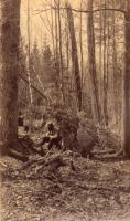 Hunting camp in Aroostook County