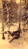 Sable trap,  ca. 1900