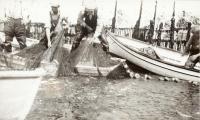 Seining the sardine weir, Eastport, 1931