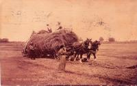 Hayrack with hay loader, ca. 1910