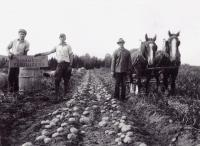 Smith Farm, New Limerick, ca. 1925