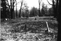 Curtis Hill, Bryant Pond, ca. 1920