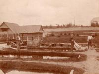 Old Fish Hatchery, Caribou, 1895
