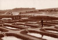 Old Fish Hatchery near Caribou, ca. 1895