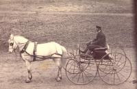 Concord wagon, c. 1900 Houlton, Maine