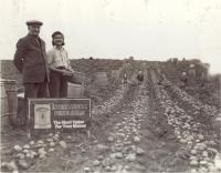 Fred A. Barton Farm, Hodgdon