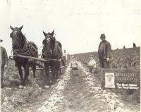 Waldo Clark farm, Sherman Mills