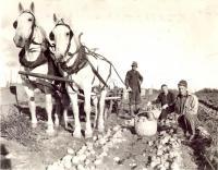 Irving Patterson farm, Sherman Mills