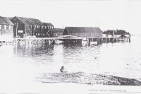 Waterfront, Brooklin