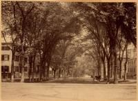 State Street, Portland, ca. 1880