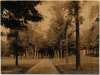 Walkway, Bowdoin College, Brunswick, ca. 1915