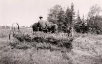 Raking hay, Caribou, ca. 1940