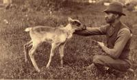 Walter Mansur with Caribou, Houlton, ca. 1895