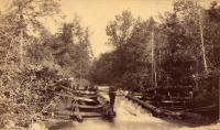 Walter Mansur, West Hastings Brook, 1893