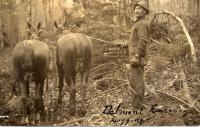 Delmont Emerson Logging in Northern Maine Woods, ca. 1910