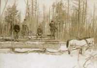 Hauling logs on a bobsled, ca. 1895