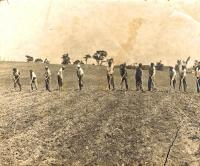 Good Will boys hoeing fields, Fairfield, ca. 1915