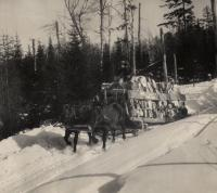 Bobsled, Eastern Manufacturing Co.