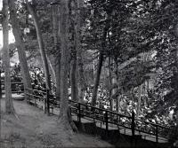 Open air theater, Riverton Park, Portland, 1902