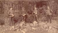 Caribou hunt in Aroostook woods, ca. 1895