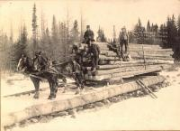 Bryson Logging Team, Aroostook Woods, c. 1915