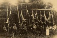Successful hunt in the Aroostook Woods, ca. 1900
