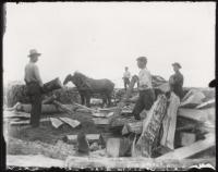 Wood cutting, Fryeburg, ca. 1900